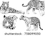set of vector drawings on the... | Shutterstock .eps vector #758099050