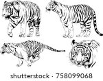 set of vector drawings on the... | Shutterstock .eps vector #758099068