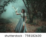 mysterious sorceress in a... | Shutterstock . vector #758182630