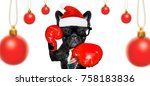 boxer french bulldog dog with... | Shutterstock . vector #758183836