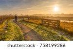 walking track in misty... | Shutterstock . vector #758199286