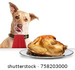 hungry dog in front of roasted... | Shutterstock . vector #758203000