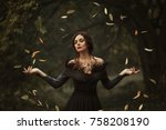 incredible  amazing  seductive... | Shutterstock . vector #758208190
