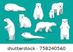 Cute Polar Bear Swimming...