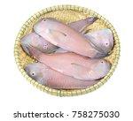 Small photo of Fresh Scaridae fish isolated on white background