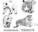 set of vector drawings on the... | Shutterstock .eps vector #758283178