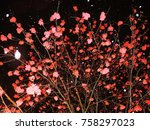 tree with red berries under the ... | Shutterstock . vector #758297023