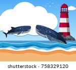 two whale sharks in the ocean... | Shutterstock .eps vector #758329120