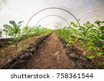 interior of an agricultural...   Shutterstock . vector #758361544