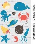 fish aquarium tropical aquatic...   Shutterstock .eps vector #758394028