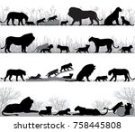 Silhouettes Of Lions And Lion...