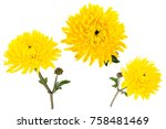 Set Of Three Bright Yellow...