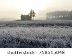 Rural Frosty Landscape On Cold...