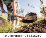a woman digs a garden with a... | Shutterstock . vector #758516260