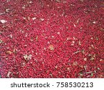 close up of red ripe... | Shutterstock . vector #758530213
