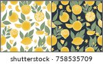 set of two seamless patterns... | Shutterstock .eps vector #758535709
