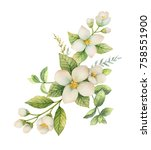 watercolor wreath of jasmine... | Shutterstock . vector #758551900