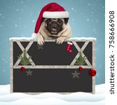 Stock photo lovely christmas pug puppy dog hanging with paws on blank blackboard sign with wooden frame and 758666908