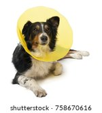 border collie wearing a space... | Shutterstock . vector #758670616