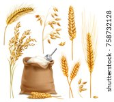 set of realistic agricultural... | Shutterstock .eps vector #758732128