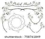 hand drawn orchid flower... | Shutterstock .eps vector #758761849