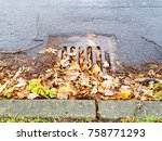 Clogged Canal By Autumn Leaves