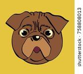 hand drawn vector pug. | Shutterstock .eps vector #758808013