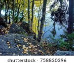 autumn forest reflected in a... | Shutterstock . vector #758830396