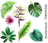 set of watercolor illustrations ... | Shutterstock . vector #758939350