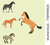 horse pony stallion isolated... | Shutterstock .eps vector #758985820
