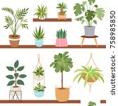 house indoor vector plants and... | Shutterstock .eps vector #758985850