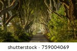the dark hedges northern ireland | Shutterstock . vector #759004069