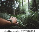 close up of male hand in jungle.... | Shutterstock . vector #759007894