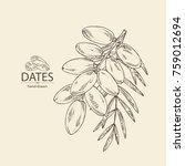 background with date fruit ... | Shutterstock .eps vector #759012694