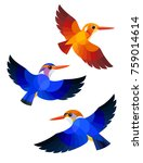 stylized birds   madagascan... | Shutterstock .eps vector #759014614