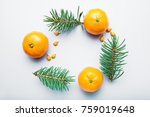 christmas pattern with orange... | Shutterstock . vector #759019648