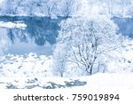stylish beautiful nature in... | Shutterstock . vector #759019894