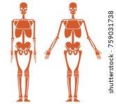 schematic representation of the ... | Shutterstock .eps vector #759031738