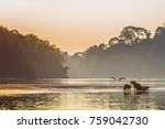 family of capybara at the... | Shutterstock . vector #759042730