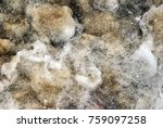 wave of sea beach   vintage... | Shutterstock . vector #759097258