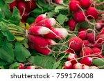 fresh red white organic...   Shutterstock . vector #759176008