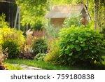 Mixed Garden Border With...