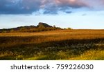 field with flowers and mountain ... | Shutterstock . vector #759226030