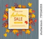 autumn sale banner. special... | Shutterstock . vector #759260203