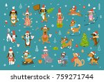 collection of cute funny... | Shutterstock .eps vector #759271744