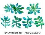 watercolor hand drawn... | Shutterstock . vector #759286690