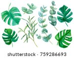 watercolor illustration with... | Shutterstock . vector #759286693