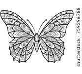 butterfly drawing for a... | Shutterstock . vector #759296788
