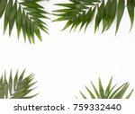 green palm leaves on the white... | Shutterstock . vector #759332440