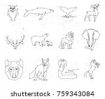 collection of animals... | Shutterstock .eps vector #759343084